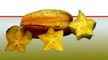 פרי הקרמבולה | עיבוד ממחושב: שולי סונגו©