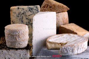 גבינות מעשה בית מתוך הספר Home Cheese Making