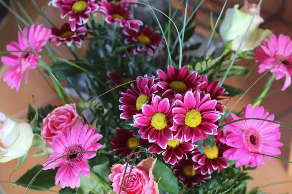 דבר אליי בפרחים לכבוד החג