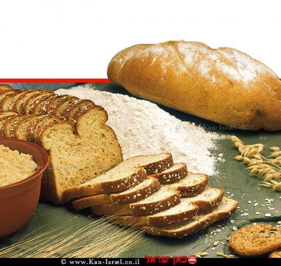 לחם, באווירה ביתית   עיבוד צילום ממחושב: שולי סונגו©