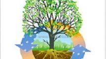 משרד החקלאות, יקיים יום עיון בנושא: גינון בר קיימא - גינון אקולוגי