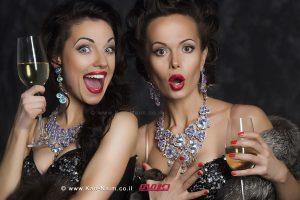 Cocktails: קוקטיילים לחגים, ארועים, מסיבות, ו'טיפים' למשקאות של יקבי ברקן | עיבוד צילום: שולי סונגו©