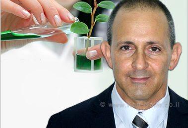סטוקטון הישראלית, קיבלה רישיון פדרלי אמריקאי לחומר ההדברה הירוק טימורקס גולד | מר זיו תירוש