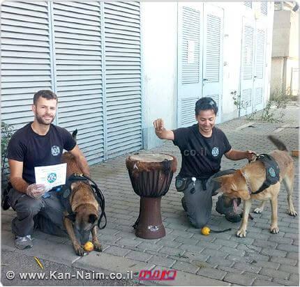 """יחידות הסמים והכלבנים ב-מכס נתב""""ג, חשפו: חשיש שנשלח מהודו בתוך דרבוקה"""