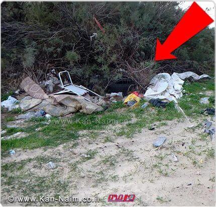 המשרד להגנת הסביבה הוציא צו שמירת ניקיון נגד מועצה אזורית חוף הכרמל