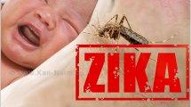 זיקה משרד הבריאות, מרגיע נערכים להתמודדות עם נגיף Zika בישראל | עיבוד ממחושב: שולי סונגו©