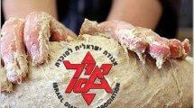 א.י.ל, אגודה ישראלית לסוכרת