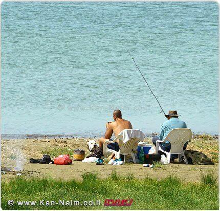דייגים בחופי רשות הכינרת | צילום: רשות הכינרת | עיבוד: שולי סונגו ©