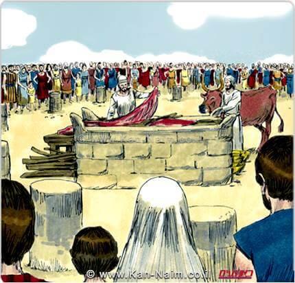 """""""וַיִּקְרָא אֶל מֹשֶׁה וַיְדַבֵּר יְהוָה אֵלָיו מֵאֹהֶל מוֹעֵד לֵאמֹר. דַּבֵּר אֶל בְּנֵי יִשְׂרָאֵל וְאָמַרְתָּ אֲלֵהֶם: אָדָם כִּי יַקְרִיב מִכֶּם קָרְבָּן לה', מִן הַבְּהֵמָה מִן הַבָּקָר וּמִן הַצֹּאן תַּקְרִיבוּ אֶת קָרְבַּנְכֶם."""" ויקרא, א', א'-ב'"""