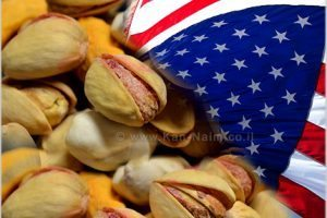 איראן מאיימת על ארצות הברית ומדינות המערב לא רק בגרעין אלא גם ב... פיסטוקים