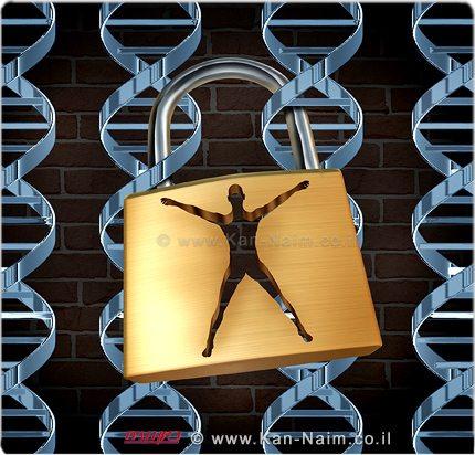 וועדת המדע והטכנולוגיה אישרה לקריאה שנייה ושלישית החוק האוסר שיבוט בני אדם