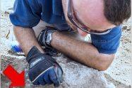 ארכיאולוג רשות העתיקות, שחר קריספין, בעת גילוי מטמון מטבעות הכסף שנמצא בבית האחוזה | צילום: אסף פרץ, רשות העתיקות | עיבוד צילום: שולי סונגו ©