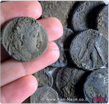 מטבע אנטיוכוס השביעי על רקע שאר מטבעות המטמון שנחשפו במודיעין | צילום סטודיו: קלרה עמית