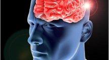 מוח וכלי דם   צילום: Depositphotos   עיבוד צילום: שולי סונגו ©