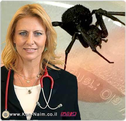 """דר' עדי קליין, מנהלת מחלקת הילדים של 'המרכז הרפואי הלל יפה'; """"כנראה מדובר בעכביש מסוג אלמנה שחורה"""""""
