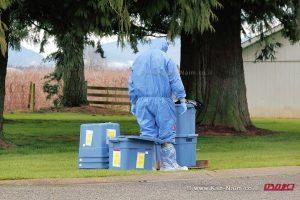 משרד החקלאות ממגר מחלת השפעת בקיבוץ חפציבה