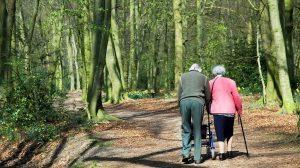 פרשת מִשְׁפָּטִים 'אל תשליכיני לעת זיקנה'   בצילום: זוג קשישים   עיבוד צילום: שולי סונגו©