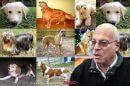 """שר החקלאות חבר הכנסת אורי אריאל: """"צער בעלי חיים הוא חשוב מאוד"""" ברקע: כלבים"""