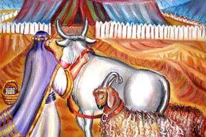 משה מביא פר ושני איילים | ציירה: אהובה קליין