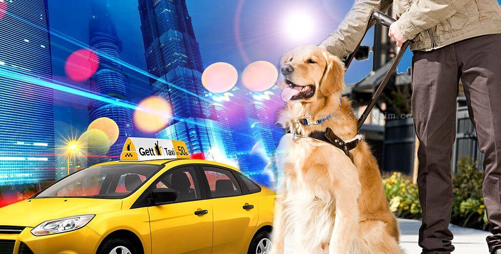 תביעה נגד 'גט טקסי' ונהגי מונית על סירוב להסיע אדם עיוור עם מוגבלות וכלב נחייה | עיבוד צילום: משה נעים ©