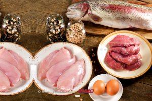 """אהבנו לאכול בחודש: 800 גרם דגים, 20 ביצים, 16 ק""""ג בשר"""