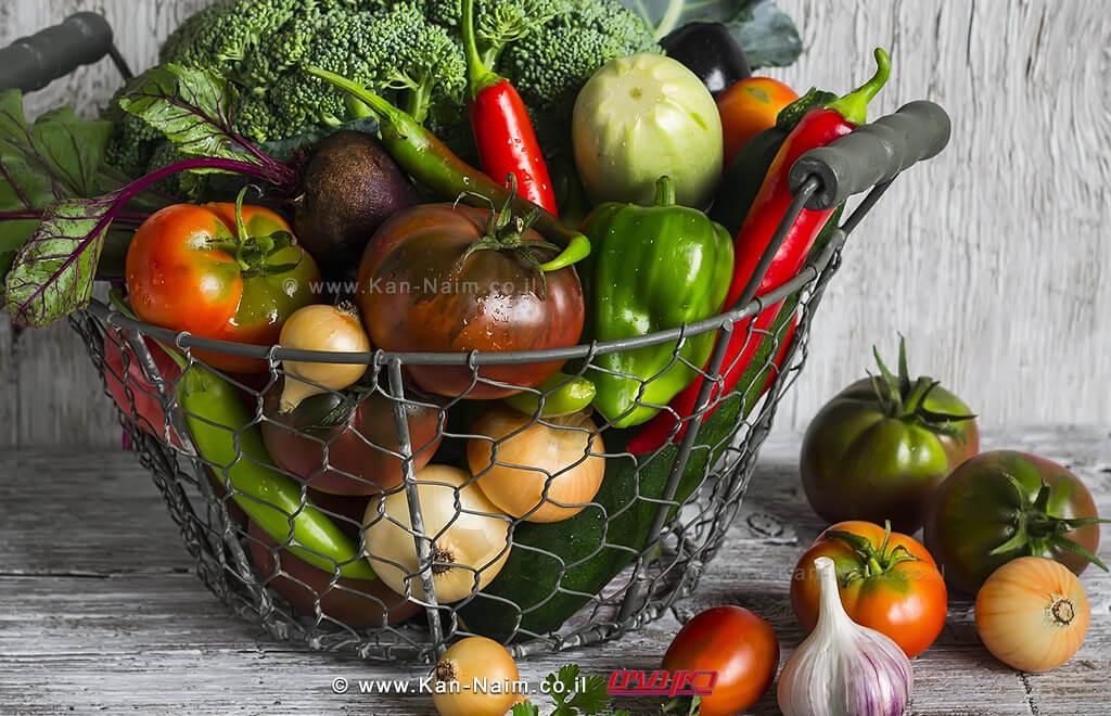 משרד החקלאות: ייבוא הירקות לרגל חג הפסח רק כ-1% מסך צריכתם | עיבוד צילום: שולי סונגו