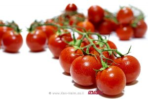 משרד החקלאות שלף כרטיס אדום למשווקים שהעלו מחיר העגבניות