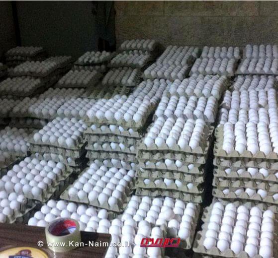 משרד החקלאות חשף בירושלים הברחת 18000 ביצים משטחי הרשות הפלשתינית | צילום: משרד החקלאות