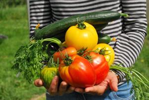 OrganicGardening_300X200k-n_25-06-17_01.jpg