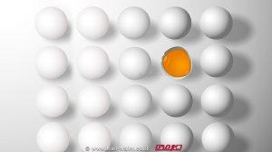 קחו עצה השתמשו נכון בביצה, טיפים של משרד החקלאות | עיבוד צילום: שולי סונגו ©