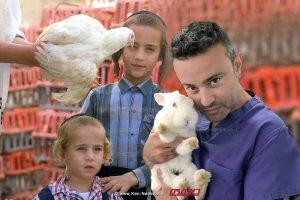 דוקטור שלי עינב יושב ראש ארגון הוטרינרים לחיות הבית בישראל ישלהפסיק מנהג הכפרות | עיבוד צילום: שולי סונגו ©