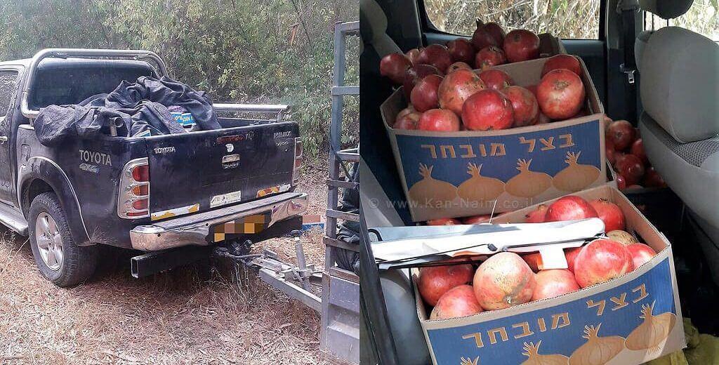 הטנדר והשלל שלתוצרת חקלאית שנתפסו על ידי משמר הגבול בדרום ישראל  צילום: דוברות המשטרה   עיבוד צילום: שולי סונגו ©