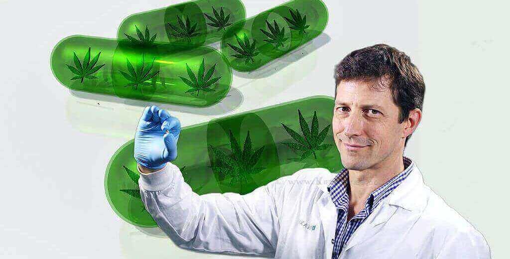 דר' דדי סגל, מנכל חברת פנאקסיה | רקע: קנאביס תרופתי |עיבוד צילום: שולי סונגו ©