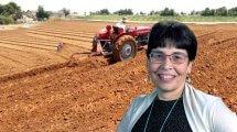 אילנה דרור, כלכלנית התאחדות ישראל
