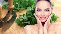 דוגמנות עם עור בריא ברקע: פֶּטְרוֹזִילְיָה