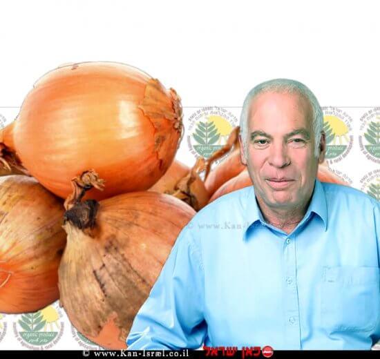 שר החקלאות אורי אריאל על המחסור המדומה שיצרו סוחרים ומגדלי הבצל | עיבוד צילום: שולי סונגו