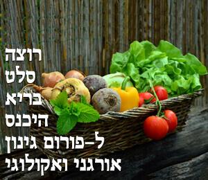 OrganicGardeningVegetables_300x260K-n_17-11-18_01-1.jpg