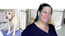 דר' דגנית בן-דב, הממונה על חוק צער בעלי חיים בשירותים הווטרינרים במשרד החקלאות | ברקע: כלבייה | עיבוד צילום: שולי סונגו
