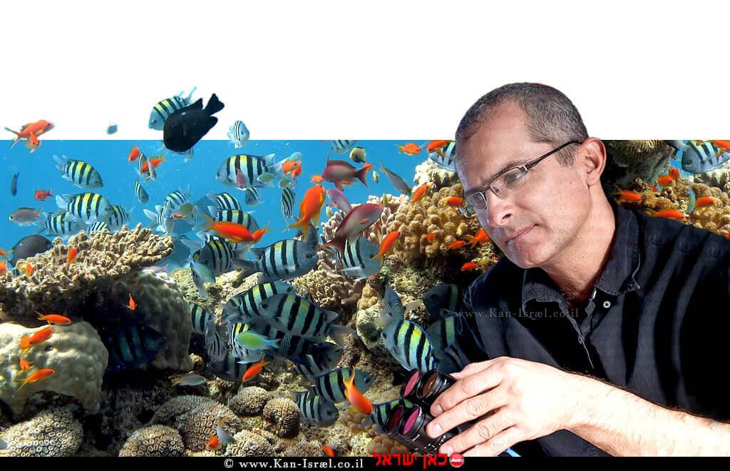 פרופ' אוהד בן-שחר, ראש המחלקה למדעי המחשב באוניברסיטת בן-גוריון ברקע: דגים | צילום: דני מכליס, אוניברסיטת בן-גוריון | עיבוד: שולי סונגו