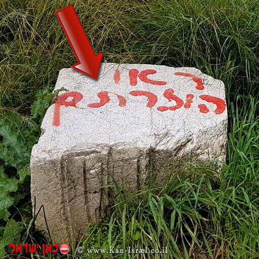 """""""ראו הוזהרתם"""" כתובת גרפיטי שרוססה על אבן ליד בית הכנסת העתיק בשמורת הטבע - הר מירון"""