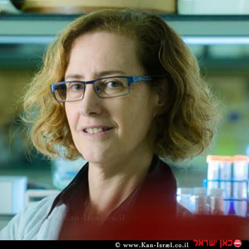 פרופ' חנה רפפורט מהמחלקה להנדסת ביוטכנולוגיה באוניברסיטת בן-גוריון ממציאת PeptOss