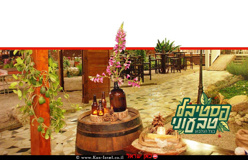 פסטיבל האוכל הטבעוני הראשון בצפון הארץ ב'גן האירועים ללוס' בקיבוץ בית אלפא | עיבוד צילום: שולי סונגו ©