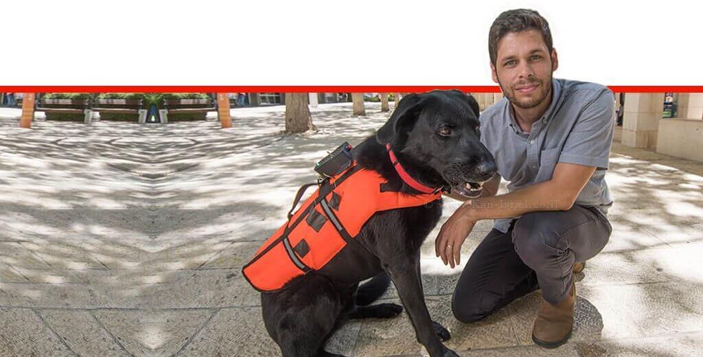 כלב לבוש האפוד המשופר, באמצעותו ניתן לאמן את הכלב לשבת, לשכב, לשוב למאלף או להביא אובייקט בהתאם לרטט | צילום: יחסי ציבור.