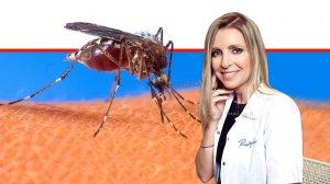 דר' להבית אקרמן, מומחית לרפואת העור ברקע: יתוש עוקץ בעור | עיבוד צילום ממחושב: שולי סונגו©