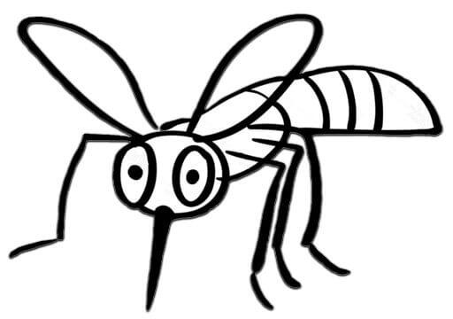 ציור של יתוש