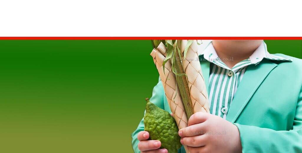 נער מחזיק ב'ארבעת המינים': אתרוג, לולב, הדס ו-ערבה | עיבוד צילום ממחושב: שולי סונגו©
