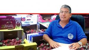 רואי קליגר מנהל היחידה המרכזית לאכיפה וחקירות של משרד החקלאות, ברקע: ניסיון לשיווק תותי שדה באזור ירושלים | עיבוד ממחושב: שולי סונגו©