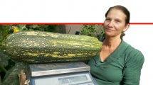 רונית אלעזרי, חקלאית מחוות 'ירק אורגנית תיירותית' עם קישוא ענק, משקלו 7.14 קילוגרמים שגידלה בערבה התיכונה | עיבוד ממחושב: שולי סונגו©
