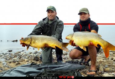 דייגים אליפות 'תחרות הבינלאומית לדייג ספורטיבי' בחופי איגוד ערים כינרת | עיבוד ממחושב: שולי סונגו©