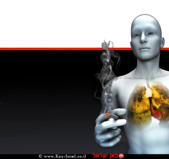 עישון הורג, סרטן הריאה   עיבוד ממחושב: שולי סונגו©